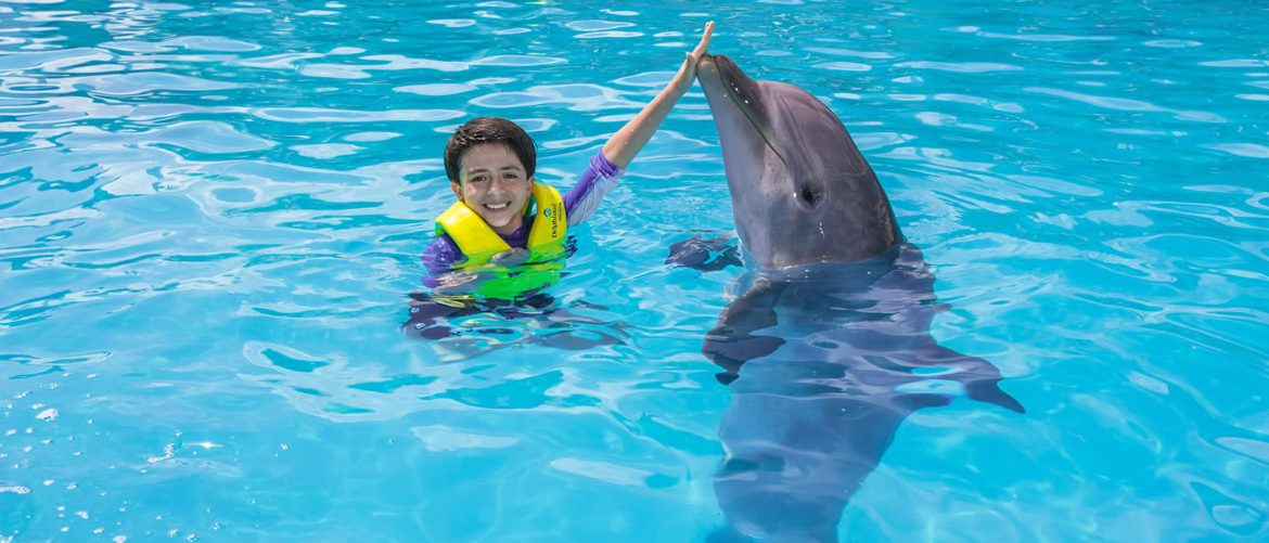 Tour splash con Delfines