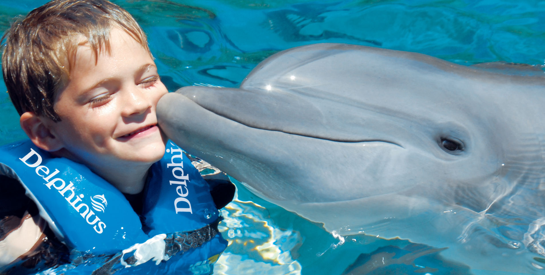 Xcaret Tours and Swim with Dolphins